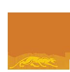 314 Pool Cue Shaft Logo