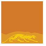 Predator Z-3 Low Deflection Shaft Logo