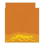 Vantage Pool Cue Shaft Logo