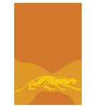 Predator Vantage 3C Low Deflection Carom Shaft Logo